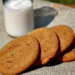Pumpkin and Biscoff Cookies