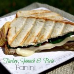 Turkey, Spinach and Brie Panini #HVSandwichSpreads