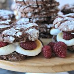 Chocolate Marshmallow Raspberry Whoopie Cookies