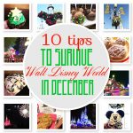 Disney World Tips: 10 Tips to Survive Disney World at Christmas