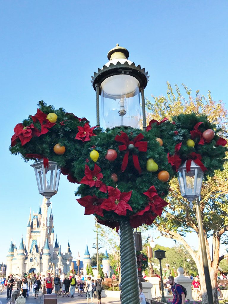 Disney World Tips Christmas