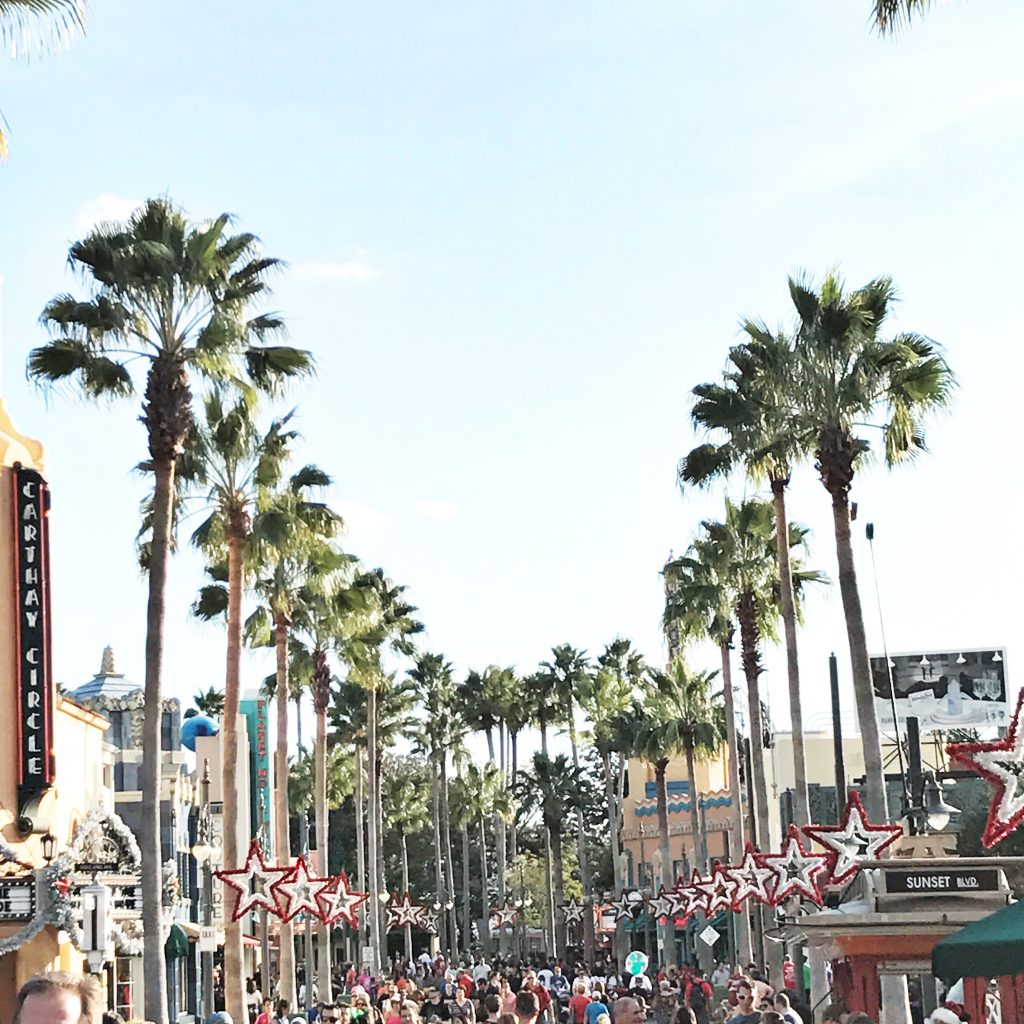 disney-world-hollywood-studios-palm-trees-christmas