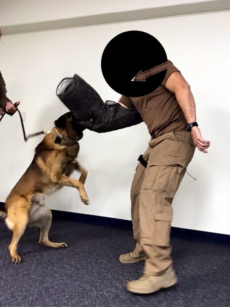 Lubbock Law Enforcement Citizens Academy K9